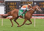 Da Big Hoss won the American St. Leger last out