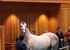 Hip 140, a colt by Tapit, brought $1.25 million.