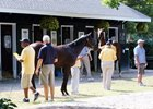 The sales grounds are busy as Fasig-Tipton's New York-bred sale gets under way