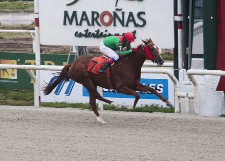 Blossom d'Orange wins Produccion Nacional at Maronas in Uruguay to become 1,000th winner for Barry Irwin's Team Valor International