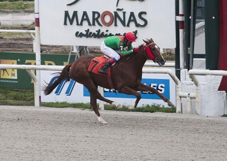Team Valor International reached a milestone over the weekend when Blossom d'Orange landed the 1,000th win for a partnership formed by Barry Irwin, scoring by 5 lengths in Saturday's Group 3 Produccion Nacional at Maronas in Uruguay.