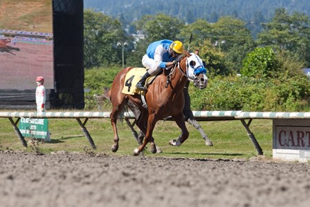 Something Better wins the British Columbia Cup Debutante S. at Hastings Aug. 1, 2016