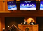 Medaglia d'Oro Filly Sells for $1.45 Million
