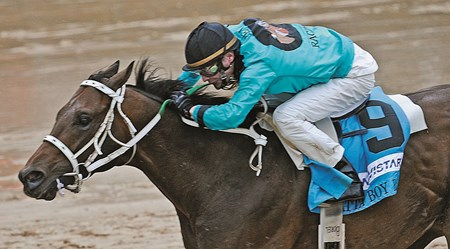 Atta Boy Roy, Calvin Borel up, wins the Churchill Downs Stakes at Churchill Downs, Louisville, KY, 5/1/10