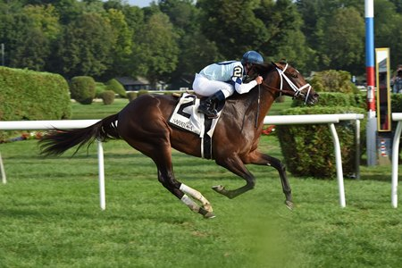 Made You Look wins the With Anticipation Stakes Aug. 31.