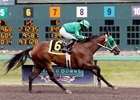 Risque's Legacy wins at Emerald Downs Aug. 28