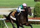 Flintshire Among First 'Super Saturday' Cast
