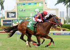 Difamante First Winner for Bullet Train