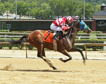 Spa Creek wins the 2016 Hancock County Stakes.