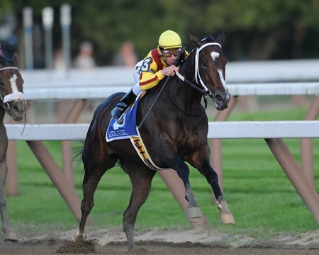 Rachel Alexandra wins the 2009 Woodward