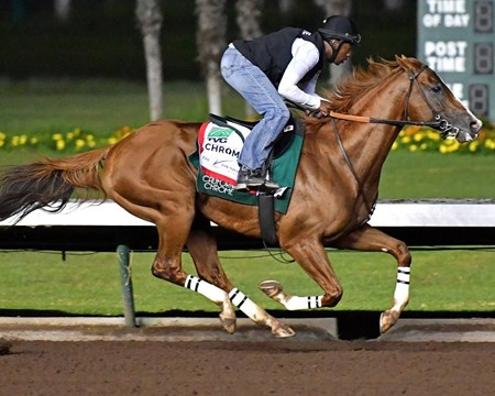 California Chrome has his final Pacific Classic prep in a time of 1:00.40 on Aug. 14, 2016.