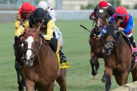 Jockey Edgar Prado guides Messi to victory in the $200,000 Sky Classic Stakes at Woodbine Racetrack Aug. 21, 2016.