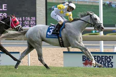 Camp Creek wins Breeders' Stakes Aug. 21 at Woodbine
