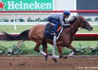 Beholder works at Del Mar Aug. 10