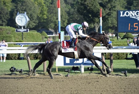 Arrogate wins the 2016 Travers Stakes