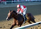 Songbird wins Aug. 20 Alabama Stakes