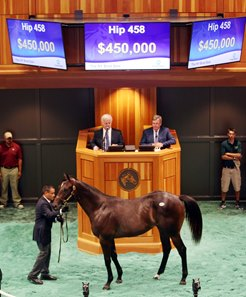 Hip 458 sells for $450,000