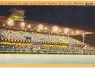 A vintage postcard of Ocean Downs