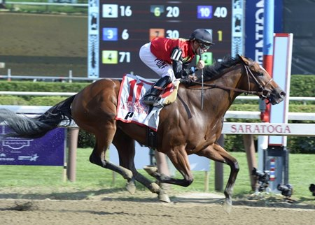 A.P. Indian flies home to win the Forego