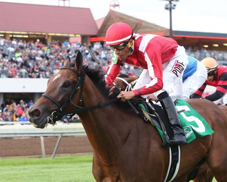 Prado's Sweet Ride wins the 2016 Minnesota H. B. P. A. Distaff Stakes.