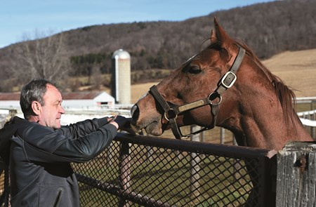 Philippe Lasseur and Dublin at Keane Stud in Amenia, N.Y., 2015