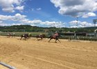 Racing at Mountaineer in West Virginia