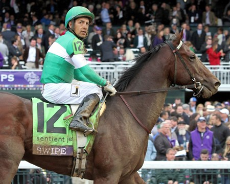 Swipe after losing to Nyquist Nyquist (#13) and jockey Mario Gutierrez win the Breeders' Cup Juvenile at Keeneland on October 31, 2015.