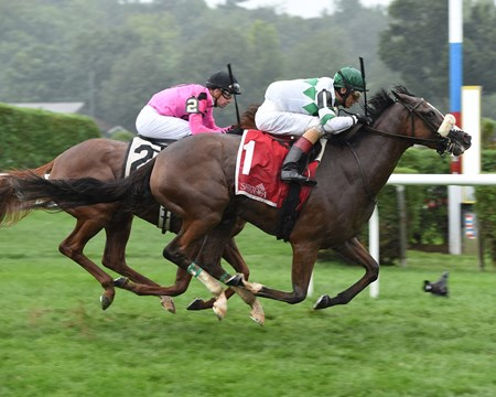 Time and Motion wins Lake Placid Stakes Aug. 21, 2016.