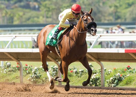 Masochistic wins the 2016 Pat O'Brien Stakes (G2) at Del Mar
