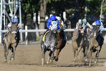 Frosted wins the 2016 Whitney