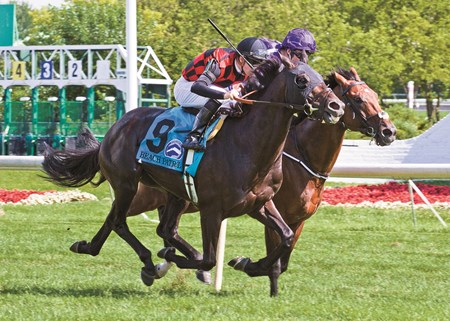 BEACH PATROL winning the Secretariat Stakes at Arlington Park on 8/13/16 jockey up Florent Geroux