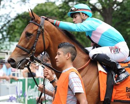 Lady Eli wins the 2015 Wonder Again.