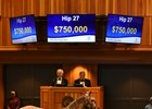 Hip 27 sold for $750,000