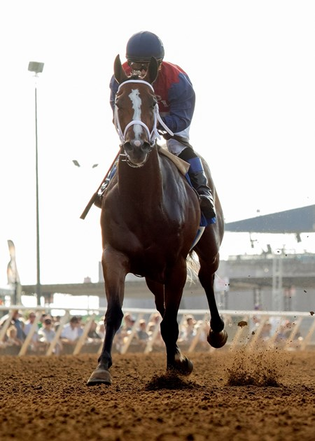 Miss Sunset wins the 2016 Generous Portion Stakes
