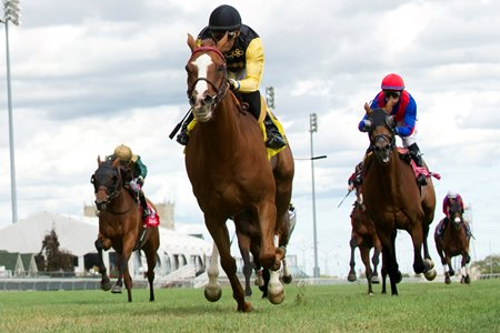 Messi wins Aug. 21 Sky Classic Stakes at Woodbine