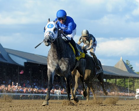 Frosted Dazzles In Whitney Bloodhorse