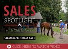 Sales Spotlight with Claire Novak - Saratoga Sale Recap Day 1