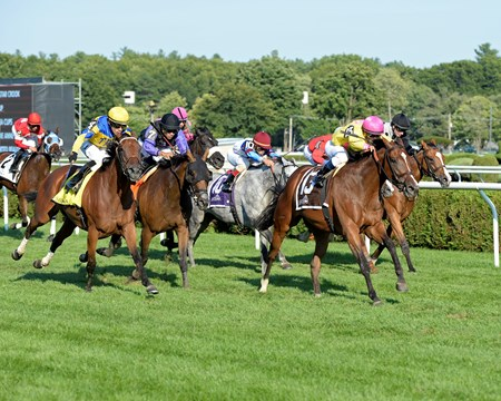 Fourstar Crook with Javier Castellano wins the Yaddo on Aug. 26, 2016, in Saratoga Springs, N.Y.