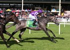 Irish Derby winner Capri wins last year's Juddmonte Beresford Stakes