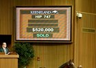 Paynter Colt Sells for $520,000 at Keeneland