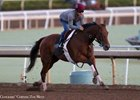 Beholder worked six furlongs in 1:12 3/5 Sept. 23