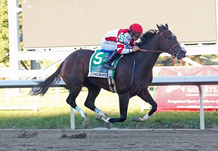 Songbird rolls to another win in the Cotillion
