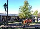 Fasig-Tipton October Yearling Sale