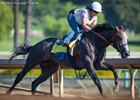 Arrogate Fires Bullet Work at Santa Anita