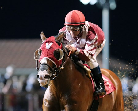 Rise Up wins the 2016 Wild and Wonderful Stakes