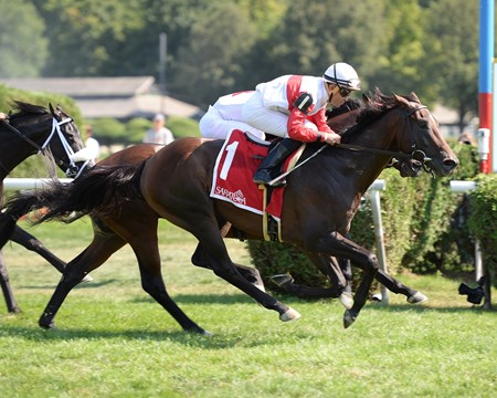 Inspector Lynley wins the 2016 Saranac Stakes.