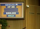 More Than Ready colt sells for $500,000 at Keeneland September.