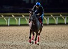 Tepin Trains Well on Woodbine Tapeta