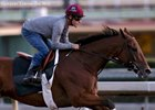 Beholder, Frosted Drill at Santa Anita