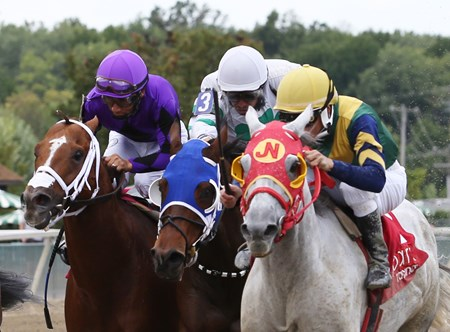 Delta Bluesman wins the 2016 Hall Of Fame Stakes at Parx Racing in Bensalem, Pennsylvania